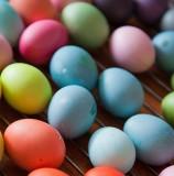 однотонные яйца